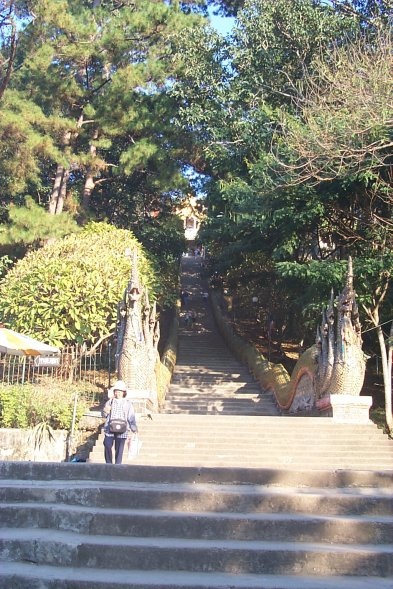 [300 Stairs up to the temple at Wat Phra That Doi Suthep (85kb)]